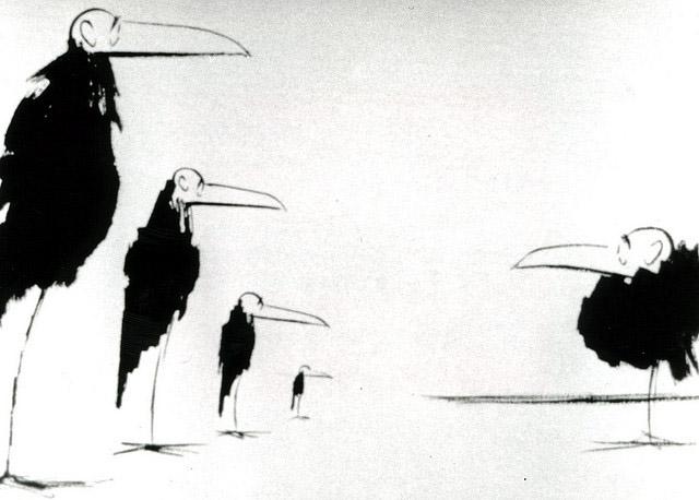 les oiseaux sont des cons